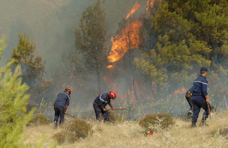 Des pompiers algériens qui tentent d'éteindre un incendie