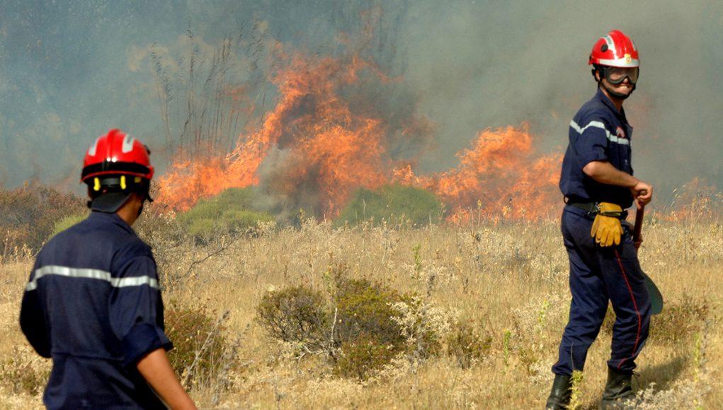 Deux pompiers algériens tentent de lutter contre les flammes qui ravagent les forêts algériennes