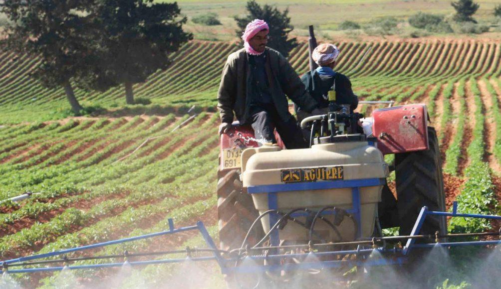 couple de paysans arrosant leur champ