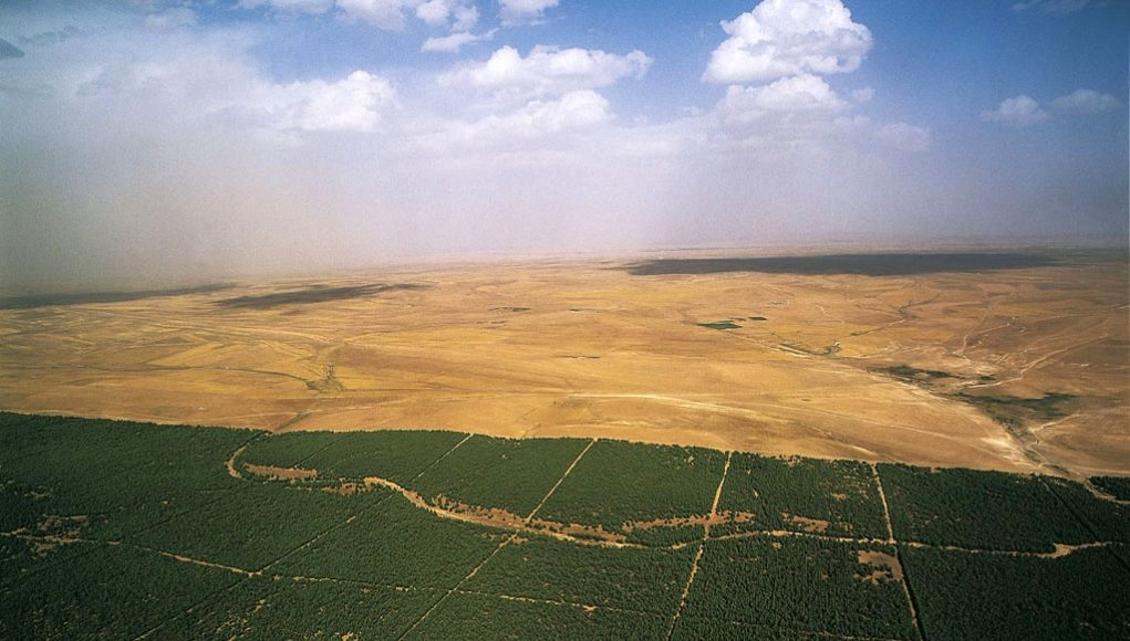 Barrage vert Algérie