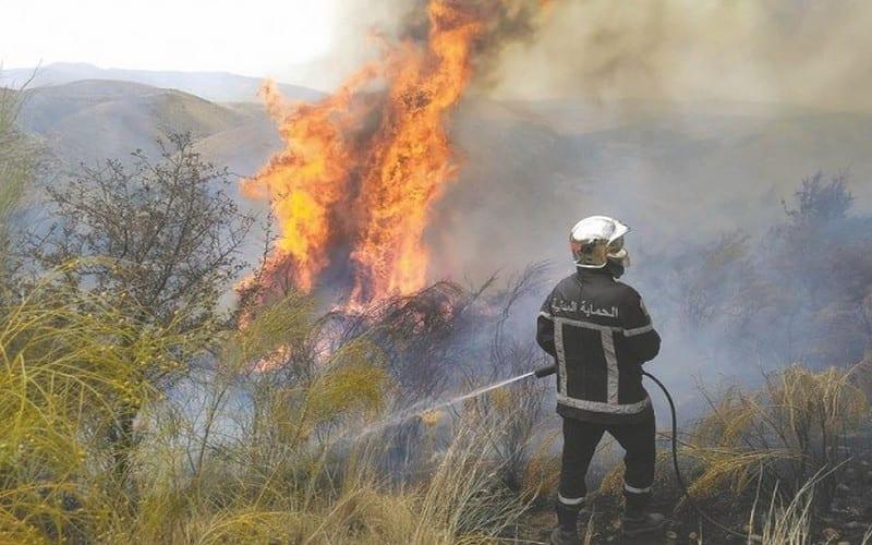 Pompier luttant contre un feu de forêt en Algérie